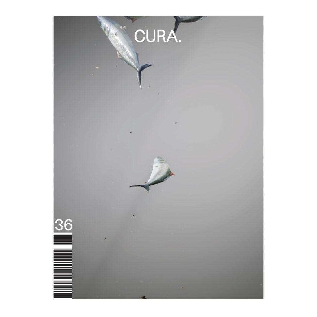 CURA. 36 Futurity
